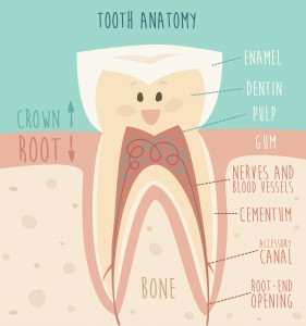 Taking Care of a Dead Tooth: Problems and Solutions