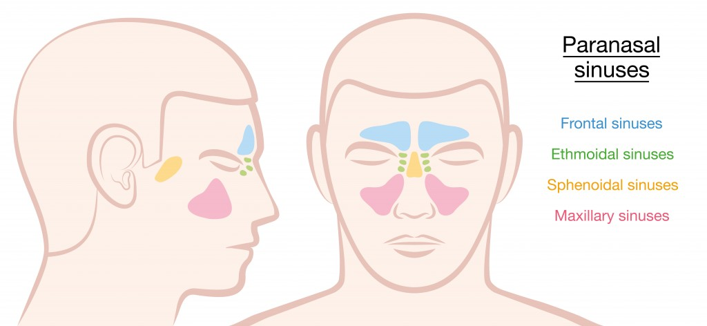 Sinusitis and tooth pain